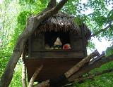 鬼太郎の家