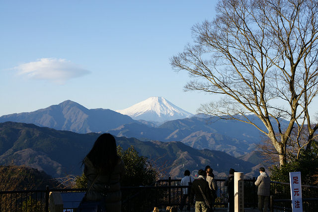 高尾山頂からの初・富士山